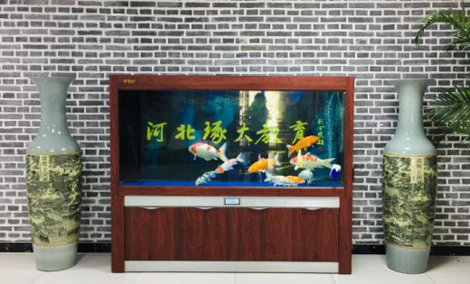 十年一剑,辉煌战果(2013年)